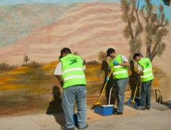 BLVD Association Launches Partnership with Desert Haven to Beautify The BLVD